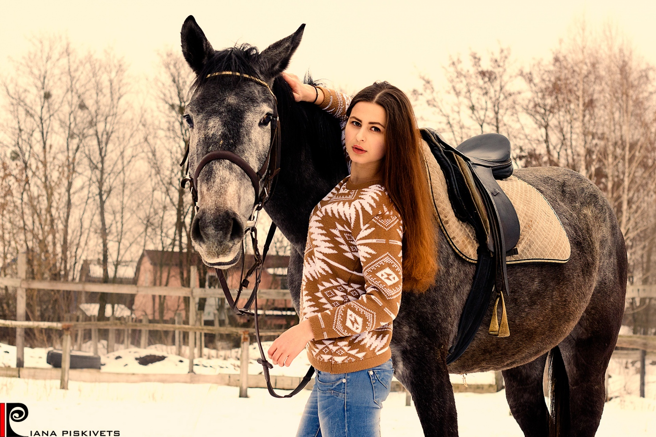 Sesja fotograficzna z koniem